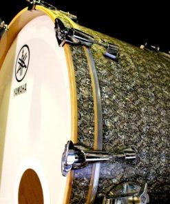 Yamaha Maple Custom Absolute Nouveau Snake Drum Drumset Drums Batteria